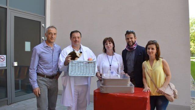 Átadták az adományokat a szolnoki Hetényi Gáza korház gyermekosztálynak